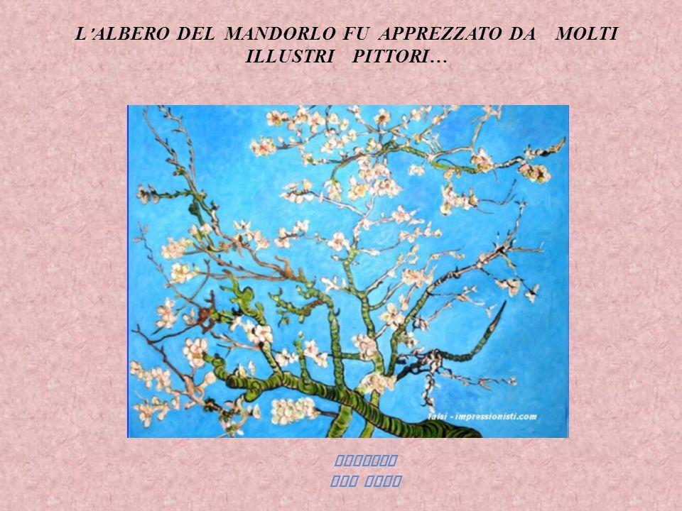 L ' ALBERO DEL MANDORLO FU APPREZZATO DA MOLTI ILLUSTRI PITTORI… VINCENT VAN GOGH