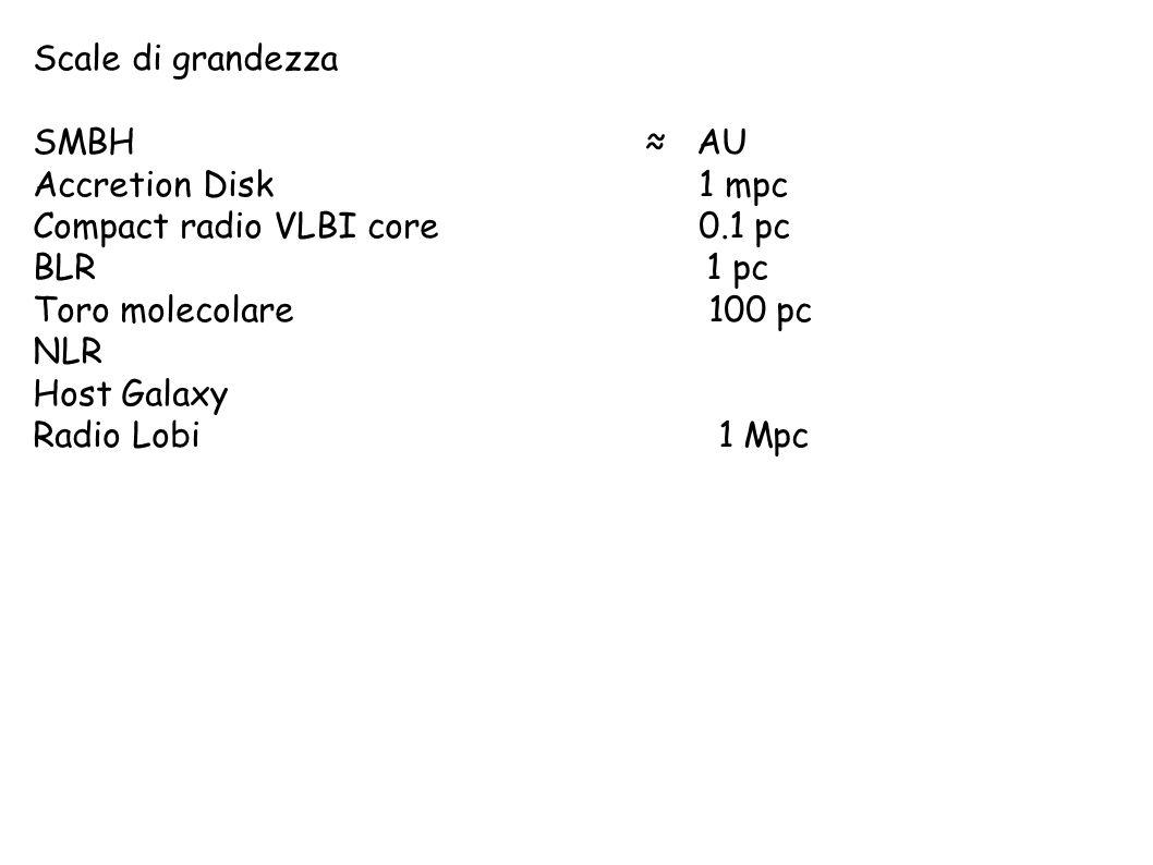 Scale di grandezza SMBH ≈ AU Accretion Disk 1 mpc Compact radio VLBI core 0.1 pc BLR 1 pc Toro molecolare 100 pc NLR Host Galaxy Radio Lobi 1 Mpc