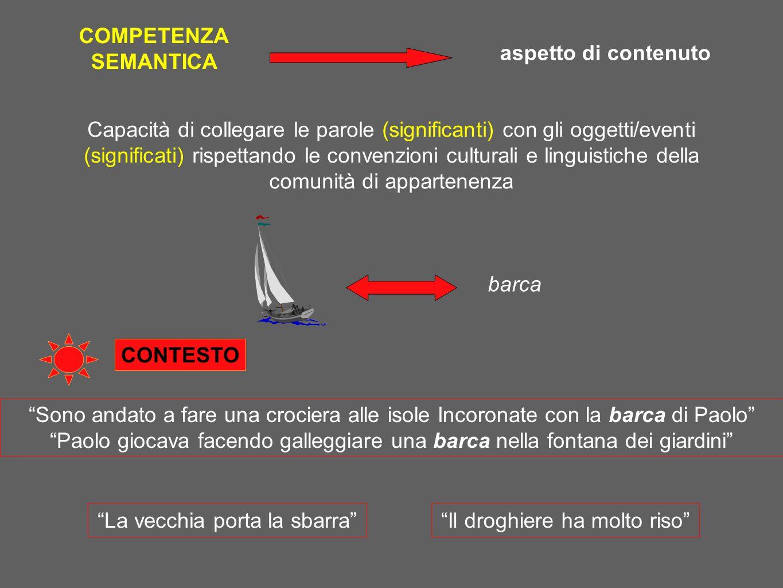 Capacità di collegare le parole (significanti) con gli oggetti/eventi (significati) rispettando le convenzioni culturali e linguistiche della comunità