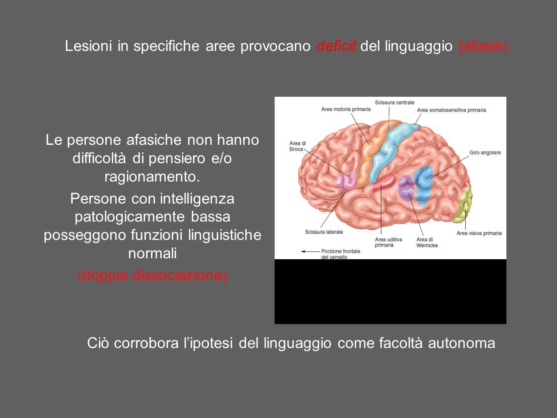 Lesioni in specifiche aree provocano deficit del linguaggio (afasie) Ciò corrobora l'ipotesi del linguaggio come facoltà autonoma Le persone afasiche