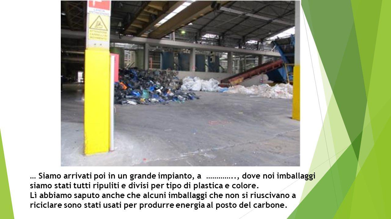 … Siamo arrivati poi in un grande impianto, a ………….., dove noi imballaggi siamo stati tutti ripuliti e divisi per tipo di plastica e colore.