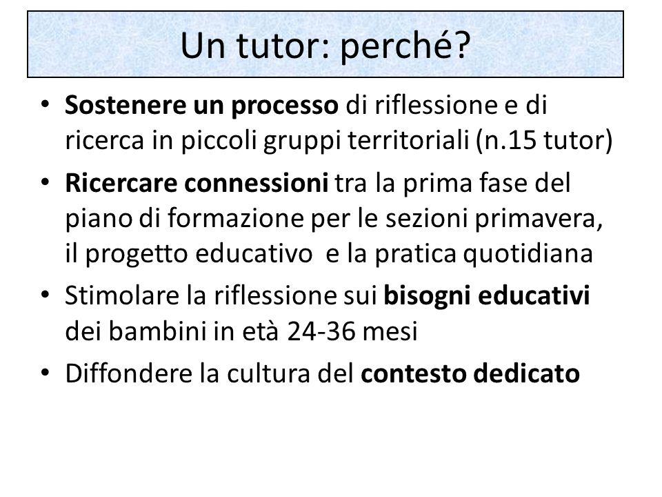 Un tutor: perché.