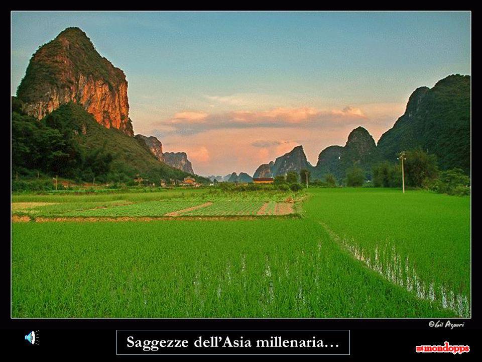 Saggezze dell'Asia millenaria…