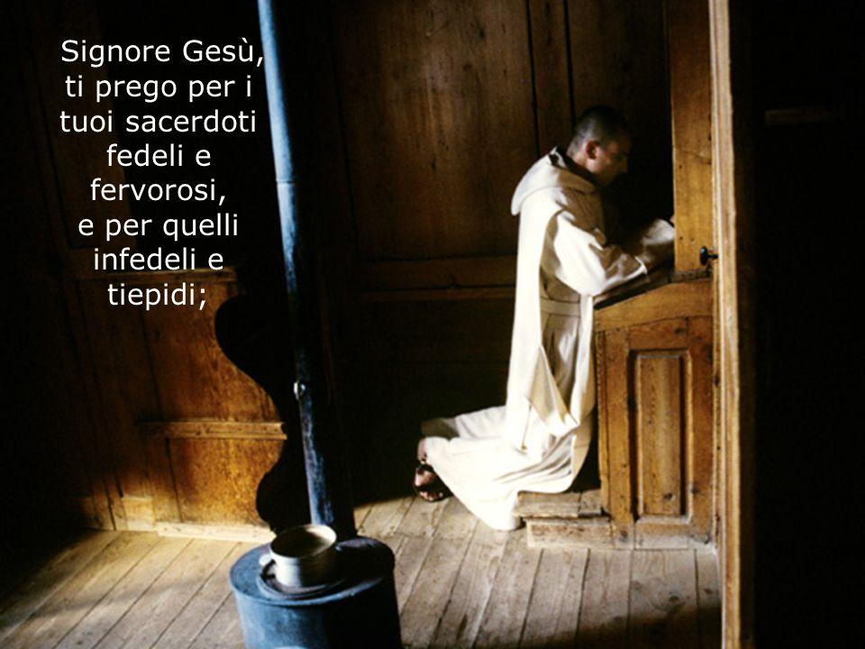 Signore Gesù, ti prego per i tuoi sacerdoti fedeli e fervorosi, e per quelli infedeli e tiepidi;