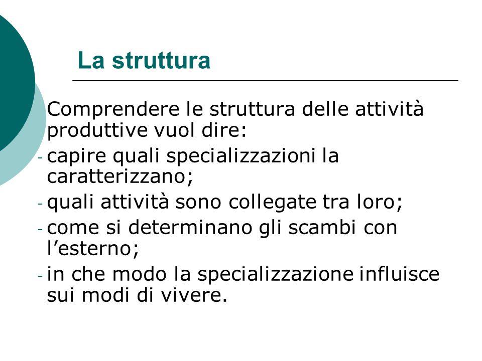 La struttura Comprendere le struttura delle attività produttive vuol dire: - capire quali specializzazioni la caratterizzano; - quali attività sono co