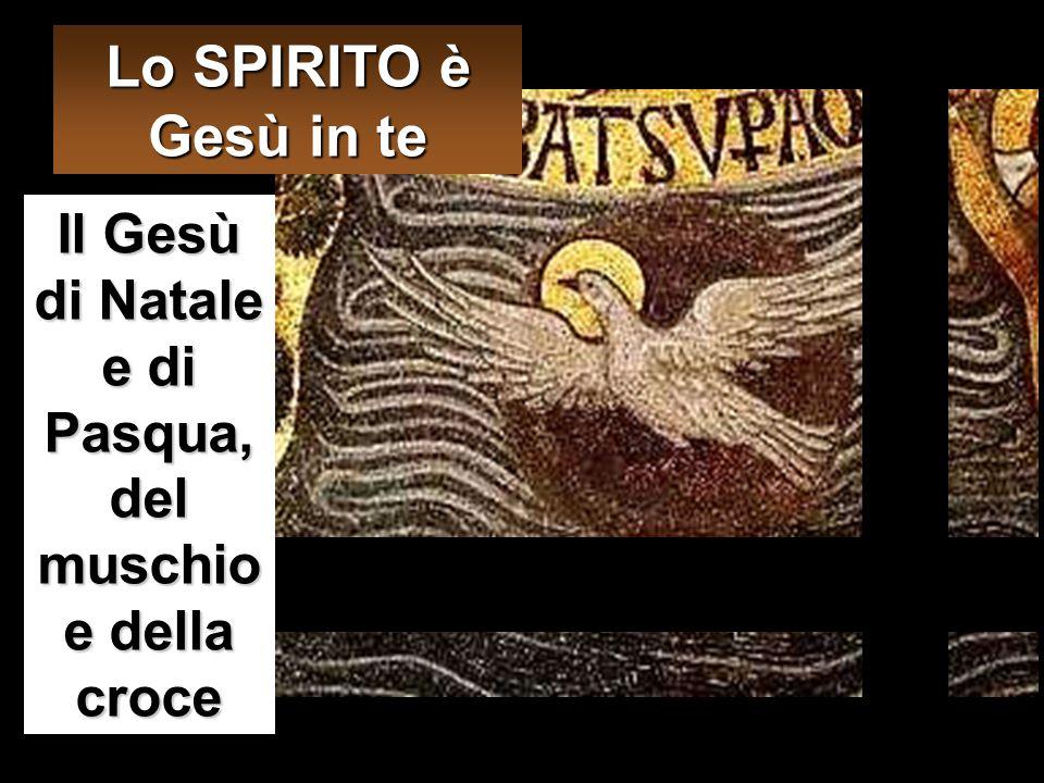 Allora Maria disse all'angelo: «Come avverrà questo, poiché non conosco uomo?» Le rispose l'angelo: «Lo Spirito Santo scenderà su di te e la potenza d