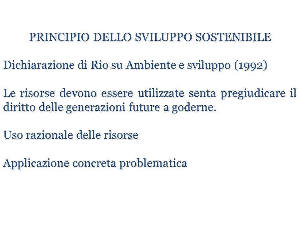 PRINCIPIO DELLO SVILUPPO SOSTENIBILE Dichiarazione di Rio su Ambiente e sviluppo (1992) Le risorse devono essere utilizzate senta pregiudicare il diri