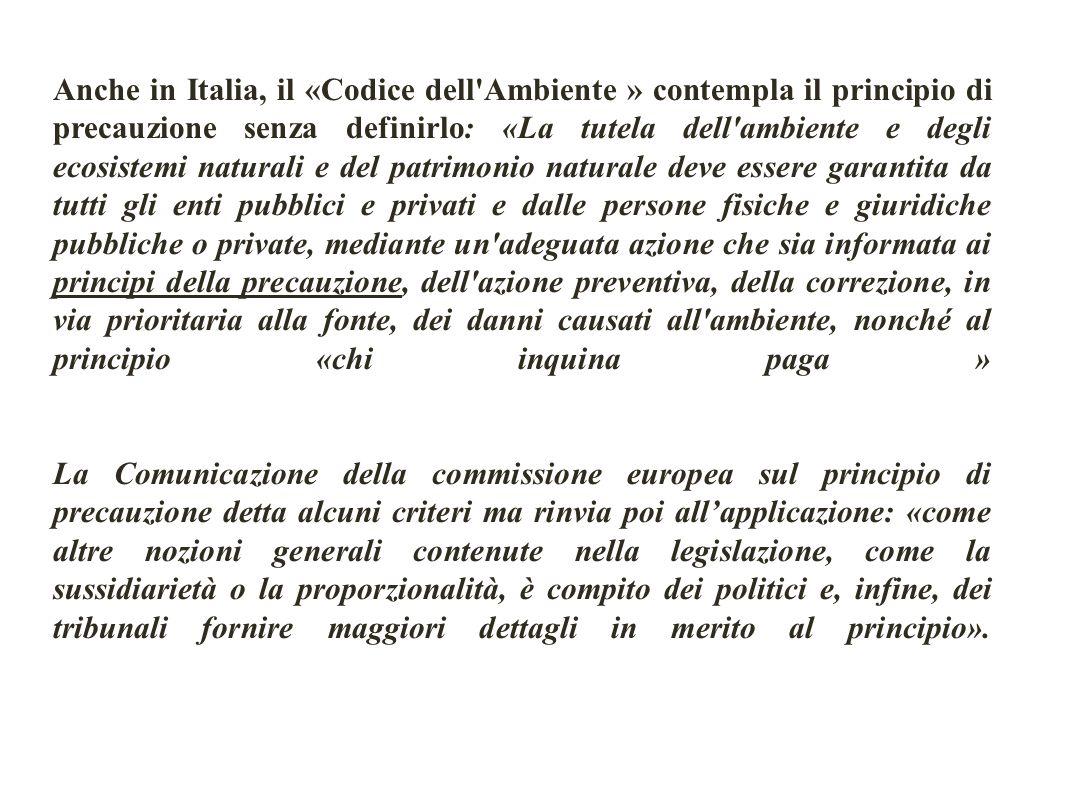 Anche in Italia, il «Codice dell'Ambiente » contempla il principio di precauzione senza definirlo: «La tutela dell'ambiente e degli ecosistemi natural