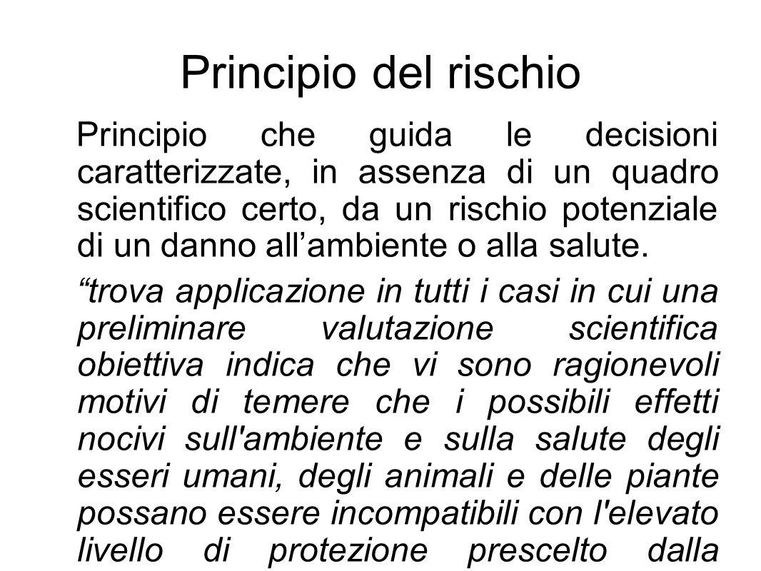 Principio del rischio Principio che guida le decisioni caratterizzate, in assenza di un quadro scientifico certo, da un rischio potenziale di un danno all'ambiente o alla salute.