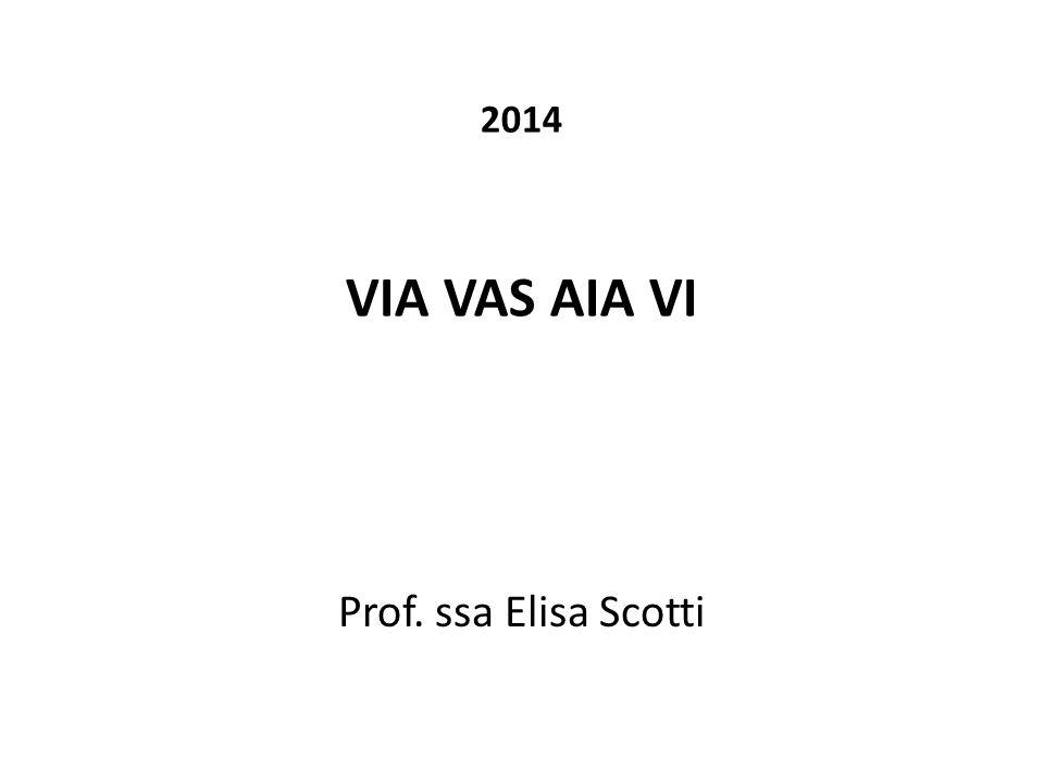 2014 VIA VAS AIA VI Prof. ssa Elisa Scotti