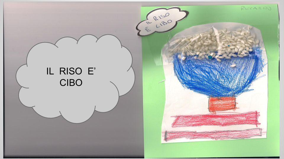 IL RISO E' CIBO