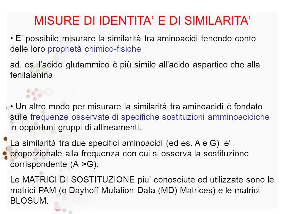 MISURE DI IDENTITA' E DI SIMILARITA' Il modo più semplice per definire le relazioni di similarità tra nucleotidi è basato solo su IDENTITA' e DIVERSITA'.
