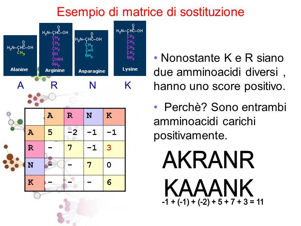 LE PROTEINE : 20 AMMINOACIDI proteinogenici