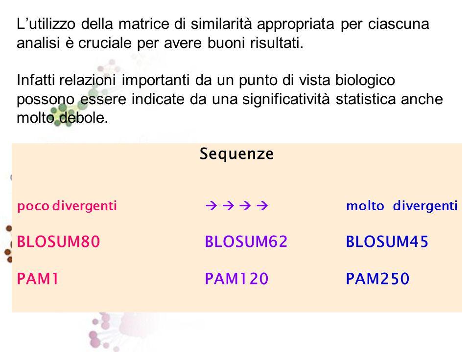 BLOSUM62 Substitution Matrix I punteggi rappresentano il log-odds score per ciascuna sostituzione:  logaritmo del rapporto tra la probabilità di osservare la sostituzione in sequenze evolutivamente correlate e la probabilità di osservarla per caso BLOSUM62