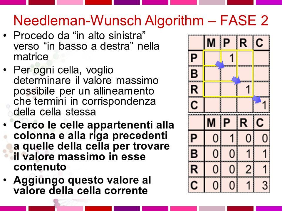 Needleman-Wunsch Algorithm – FASE 1 Similarity values valore 1 oppure 0 ad ogni cella, in base alla similarita'dei residui corrispondenti Nell'esempio: –match = +1 –mismatch = 0 MPRCLCQRJNCBA P 1 B 1 R 1 1 C 1 1 1 K C 1 1 1 R 1 1 N 1 J 1 C 1 1 1 J 1 A 1