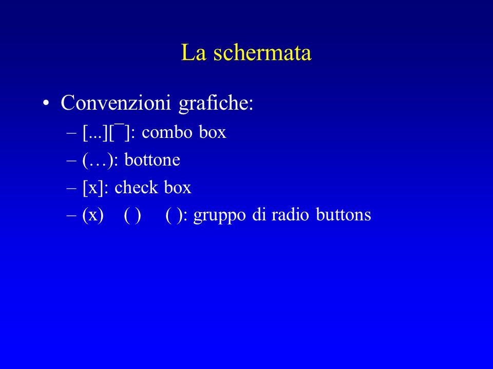 La schermata Convenzioni grafiche: –[...][¯]: combo box –(…): bottone –[x]: check box –(x) ( ) ( ): gruppo di radio buttons