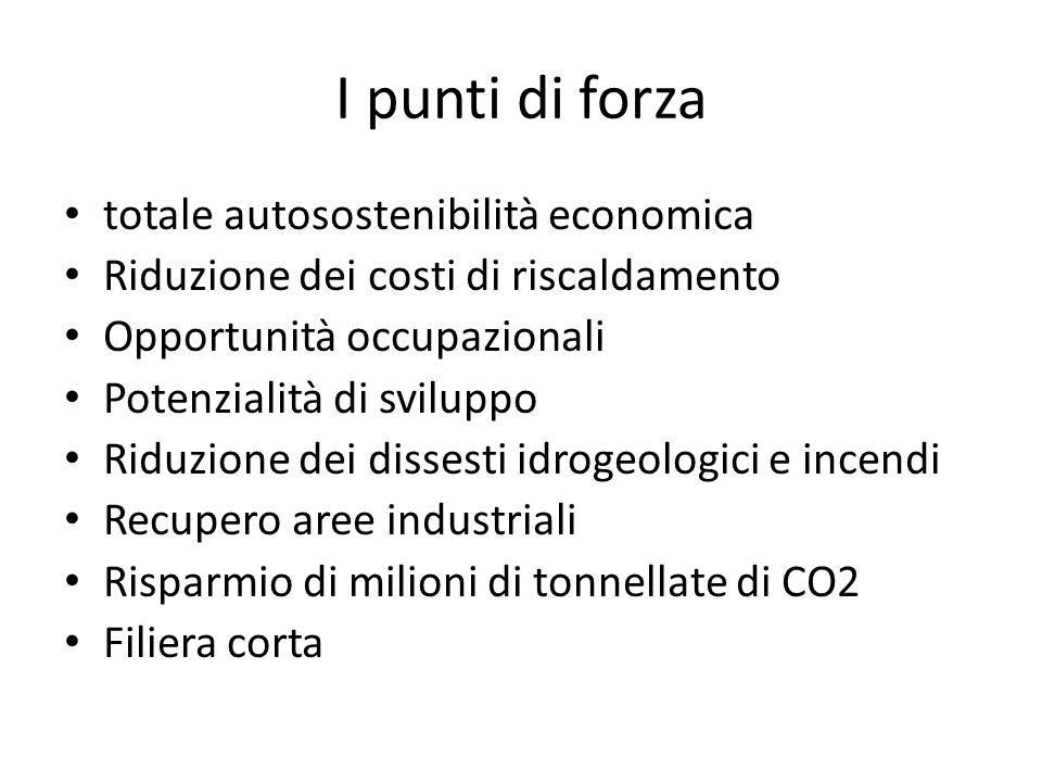I punti di forza totale autosostenibilità economica Riduzione dei costi di riscaldamento Opportunità occupazionali Potenzialità di sviluppo Riduzione dei dissesti idrogeologici e incendi Recupero aree industriali Risparmio di milioni di tonnellate di CO2 Filiera corta
