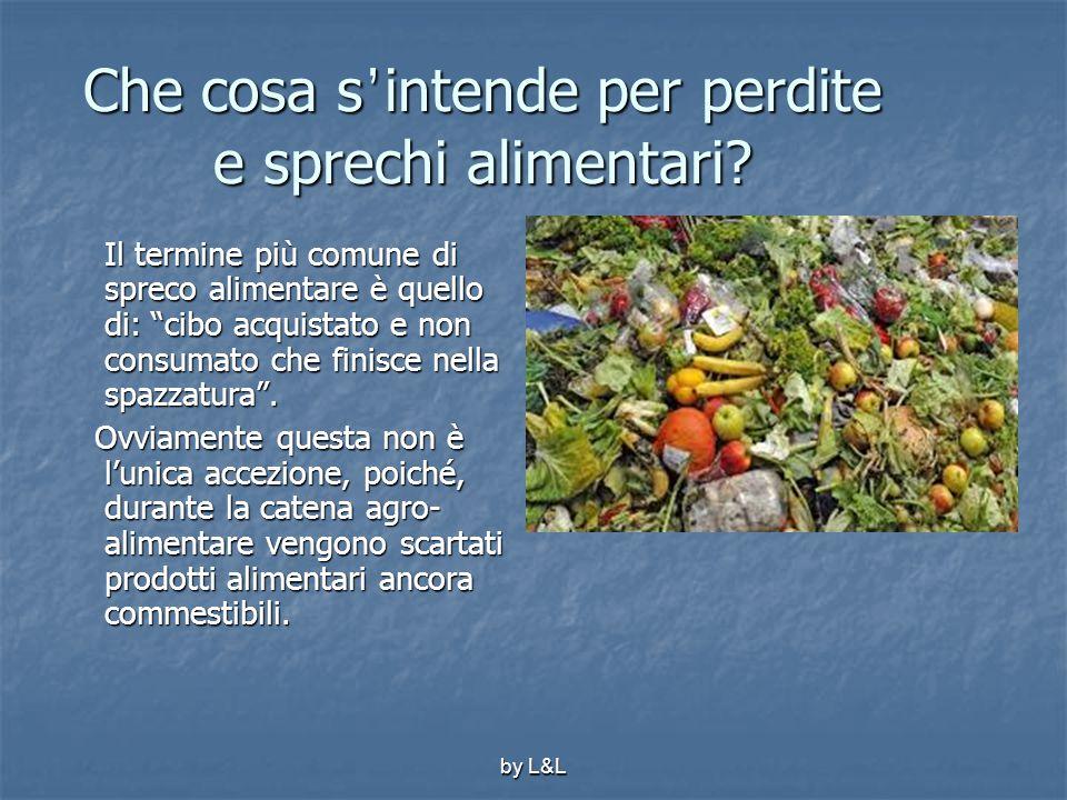 """by L&L Che cosa s ' intende per perdite e sprechi alimentari? Il termine più comune di spreco alimentare è quello di: """"cibo acquistato e non consumato"""