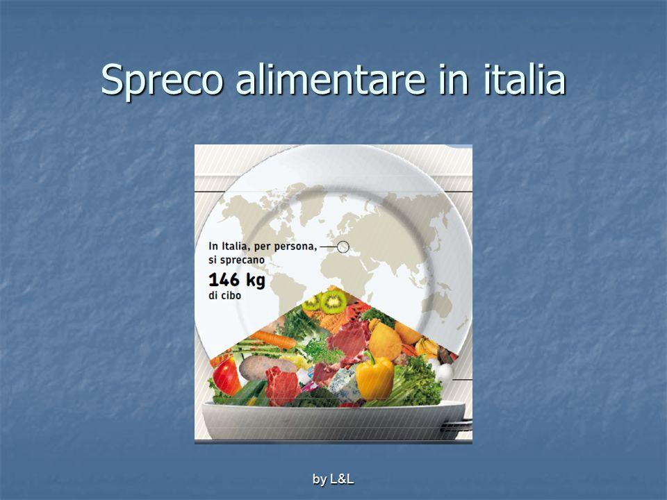 by L&L Spreco alimentare in italia