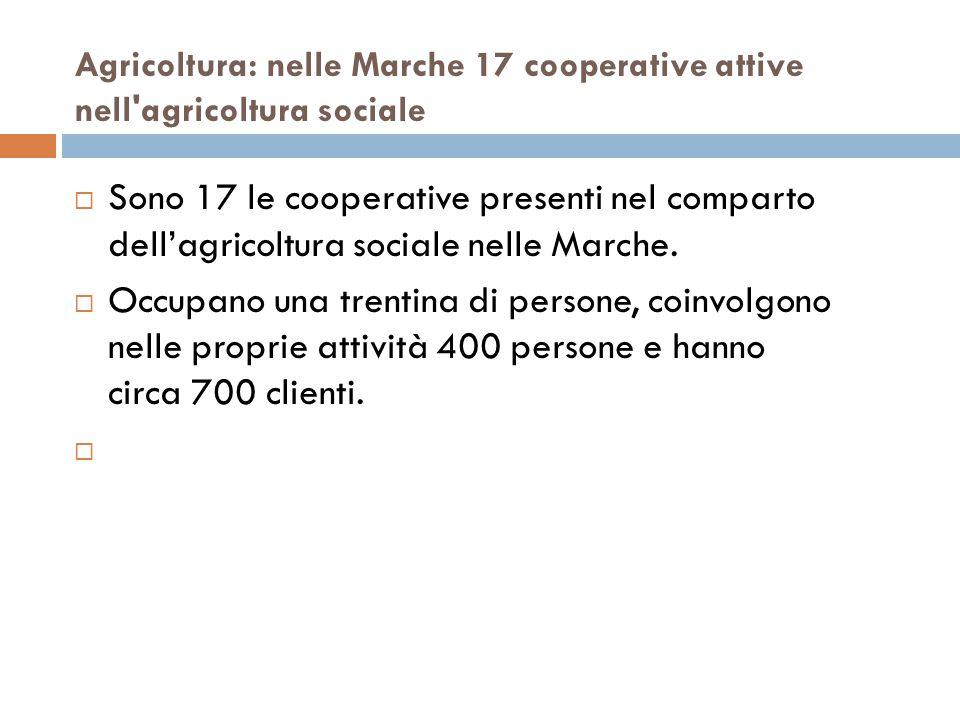 Agricoltura: nelle Marche 17 cooperative attive nell agricoltura sociale  Sono 17 le cooperative presenti nel comparto dell'agricoltura sociale nelle Marche.