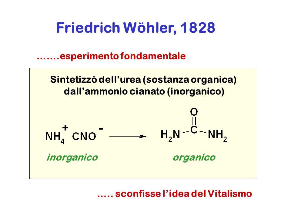 Friedrich Wöhler, 1828 ….. sconfisse l'idea del Vitalismo Sintetizzò dell'urea (sostanza organica) dall'ammonio cianato (inorganico) inorganicoorganic