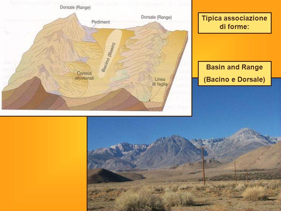 Basin and Range (Bacino e Dorsale) Tipica associazione di forme: