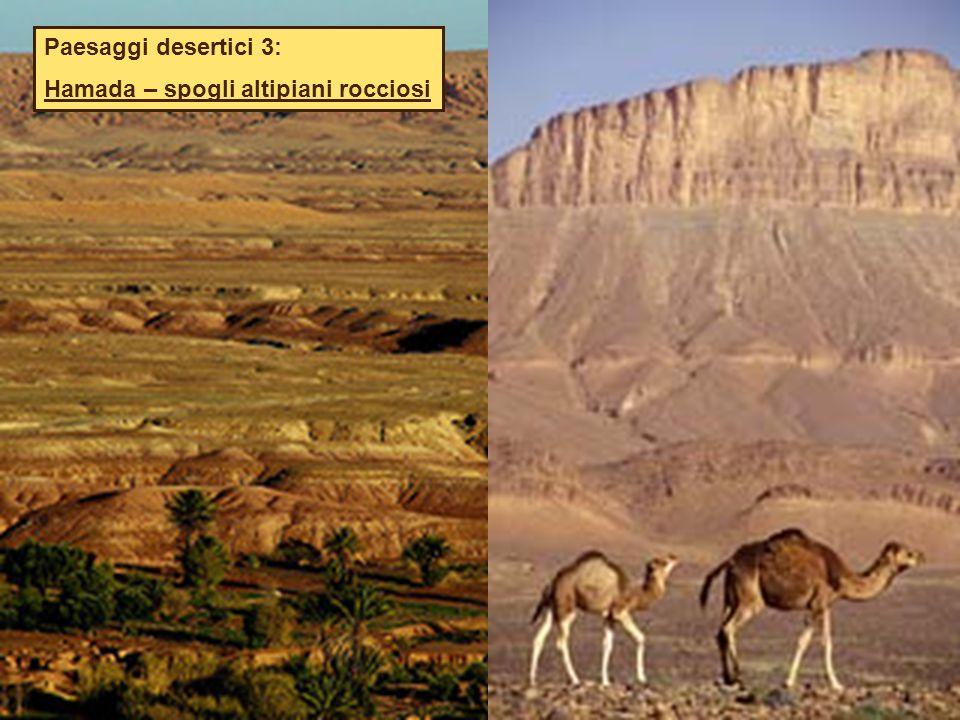 Paesaggi desertici 3: Hamada – spogli altipiani rocciosi