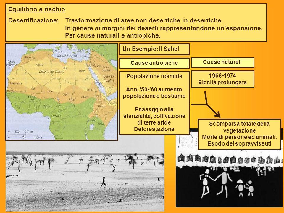 Equilibrio a rischio Desertificazione:Trasformazione di aree non desertiche in desertiche. In genere ai margini dei deserti rappresentandone un'espans