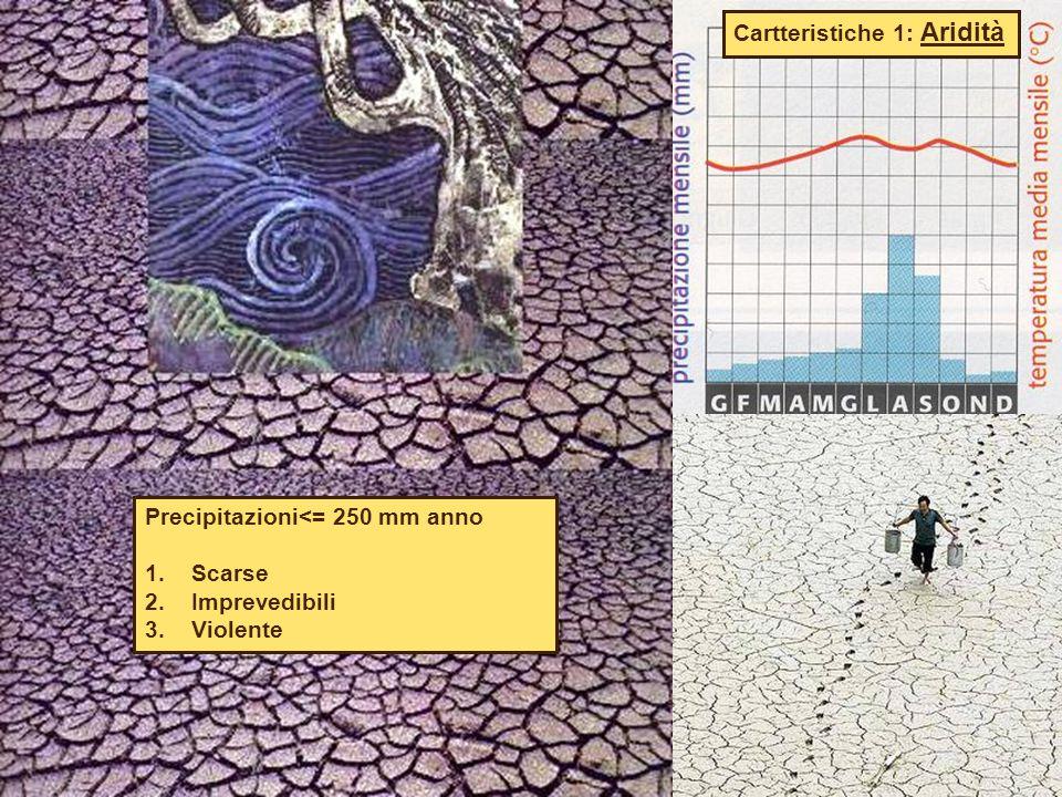 Cartteristiche 1: Aridità Precipitazioni<= 250 mm anno 1. Scarse 2. Imprevedibili 3. Violente