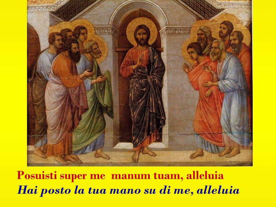 Resurrexi ed adhuc tecum sum, alleluia Sono risorto e sono sempre con te, alleluia