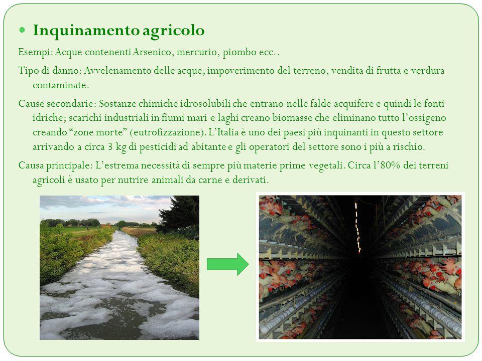 Inquinamento agricolo Esempi: Acque contenenti Arsenico, mercurio, piombo ecc.. Tipo di danno: Avvelenamento delle acque, impoverimento del terreno, v