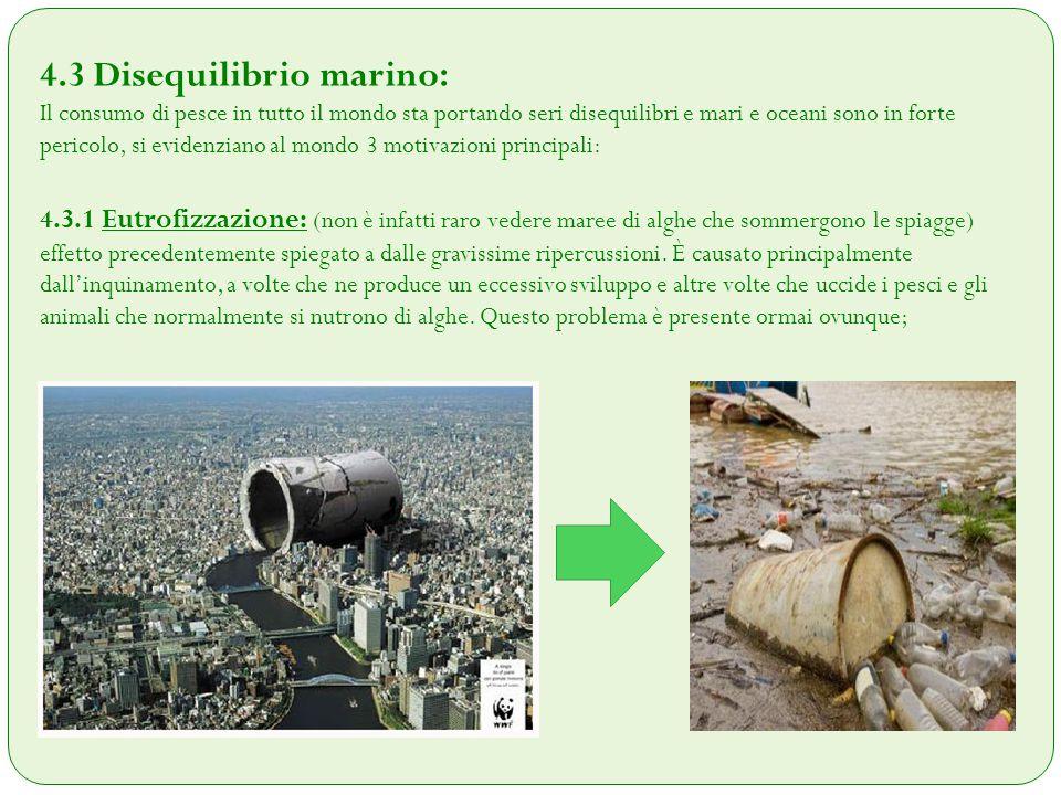 4.3 Disequilibrio marino: Il consumo di pesce in tutto il mondo sta portando seri disequilibri e mari e oceani sono in forte pericolo, si evidenziano