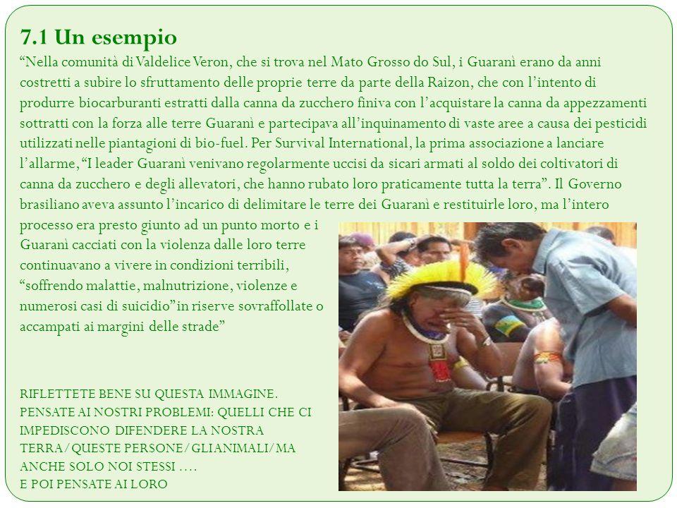 """7.1 Un esempio """"Nella comunità di Valdelice Veron, che si trova nel Mato Grosso do Sul, i Guaranì erano da anni costretti a subire lo sfruttamento del"""