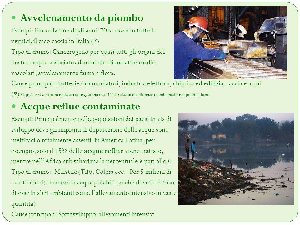 Avvelenamento da piombo Esempi: Fino alla fine degli anni '70 si usava in tutte le vernici, il caso caccia in Italia (*) Tipo di danno: Cancerogeno pe