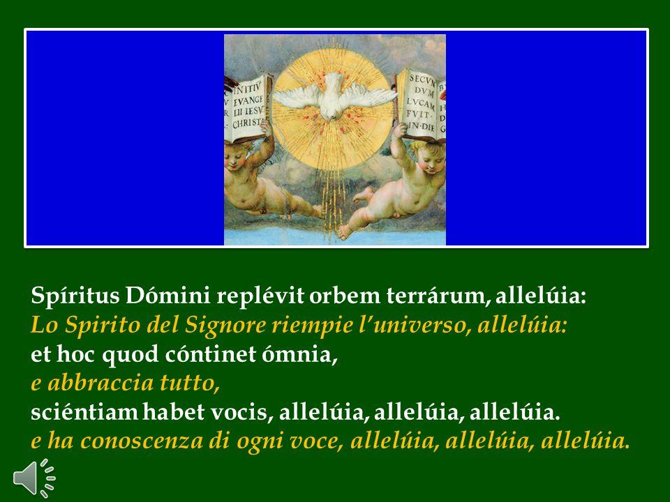 Affidiamo alla Vergine Maria i frutti del lavoro dell'Assise sinodale appena conclusa.