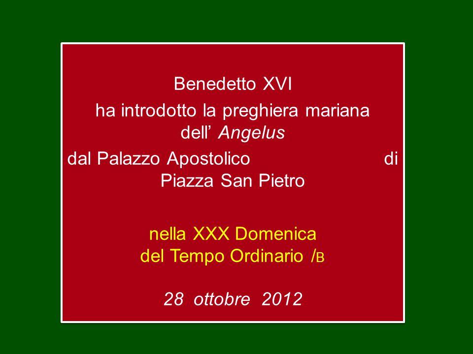 Benedetto XVI ha introdotto la preghiera mariana dell' Angelus dal Palazzo Apostolico di Piazza San Pietro nella XXX Domenica del Tempo Ordinario / B 28 ottobre 2012 Benedetto XVI ha introdotto la preghiera mariana dell' Angelus dal Palazzo Apostolico di Piazza San Pietro nella XXX Domenica del Tempo Ordinario / B 28 ottobre 2012