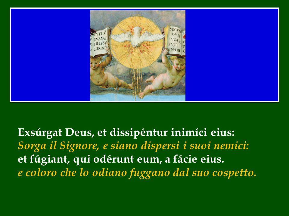 Exsúrgat Deus, et dissipéntur inimíci eius: Sorga il Signore, e siano dispersi i suoi nemici: et fúgiant, qui odérunt eum, a fácie eius.