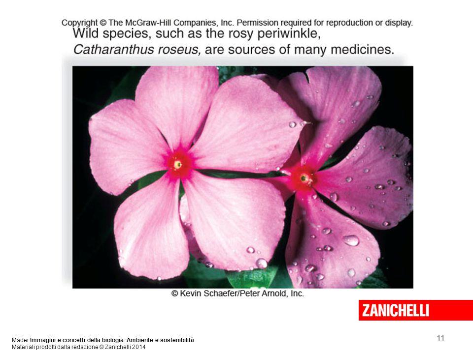 11 Mader Immagini e concetti della biologia Ambiente e sostenibilità Materiali prodotti dalla redazione © Zanichelli 2014