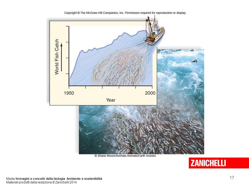 17 Mader Immagini e concetti della biologia Ambiente e sostenibilità Materiali prodotti dalla redazione © Zanichelli 2014