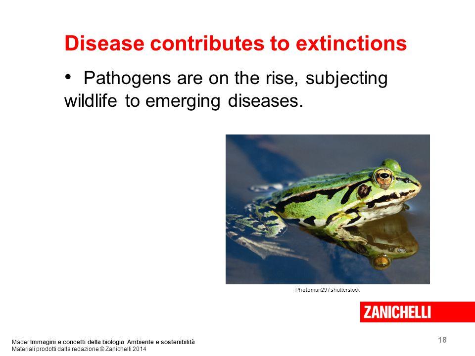 18 Mader Immagini e concetti della biologia Ambiente e sostenibilità Materiali prodotti dalla redazione © Zanichelli 2014 Disease contributes to extinctions Pathogens are on the rise, subjecting wildlife to emerging diseases.