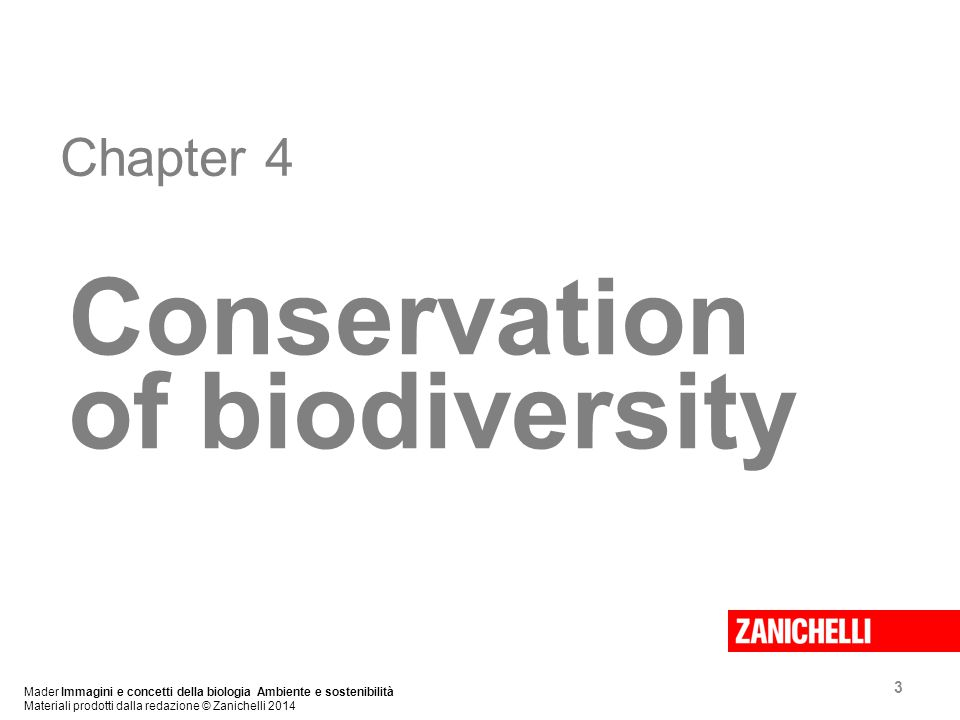 3 Chapter 4 Conservation of biodiversity Mader Immagini e concetti della biologia Ambiente e sostenibilità Materiali prodotti dalla redazione © Zanichelli 2014