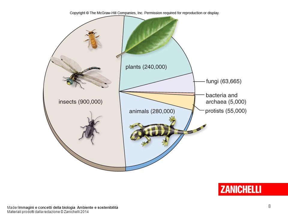 8 Mader Immagini e concetti della biologia Ambiente e sostenibilità Materiali prodotti dalla redazione © Zanichelli 2014