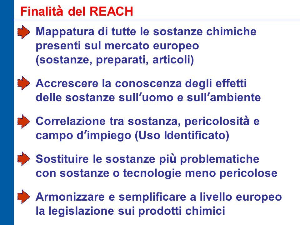 Finalit à del REACH Mappatura di tutte le sostanze chimiche presenti sul mercato europeo (sostanze, preparati, articoli) Accrescere la conoscenza degli effetti delle sostanze sull ' uomo e sull ' ambiente Correlazione tra sostanza, pericolosit à e campo d ' impiego (Uso Identificato) Sostituire le sostanze pi ù problematiche con sostanze o tecnologie meno pericolose Armonizzare e semplificare a livello europeo la legislazione sui prodotti chimici