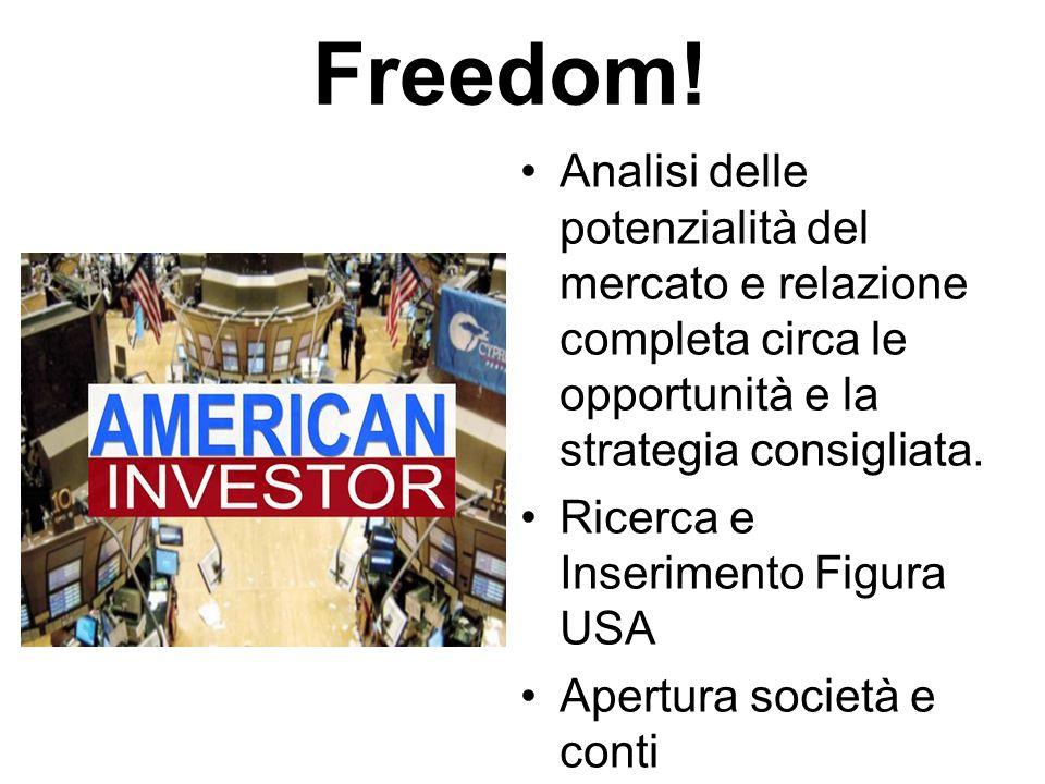 Freedom! Analisi delle potenzialità del mercato e relazione completa circa le opportunità e la strategia consigliata. Ricerca e Inserimento Figura USA