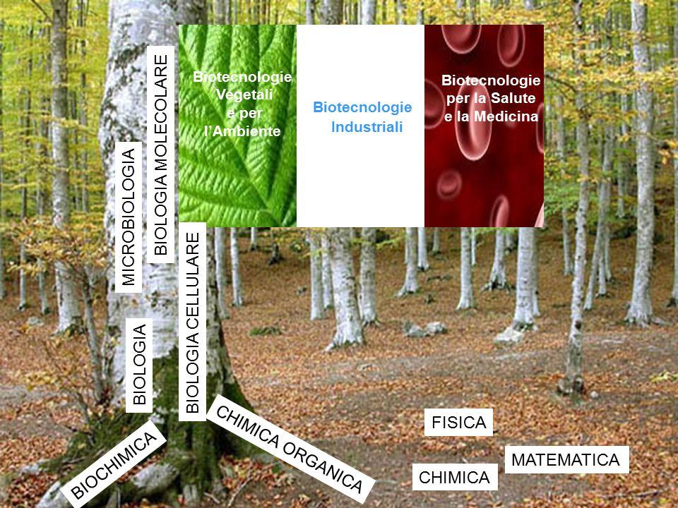 Biotecnologie per la Salute e la Medicina Biotecnologie Industriali Biotecnologie Vegetali e per l'Ambiente MATEMATICA FISICA BIOCHIMICA BIOLOGIA MICR