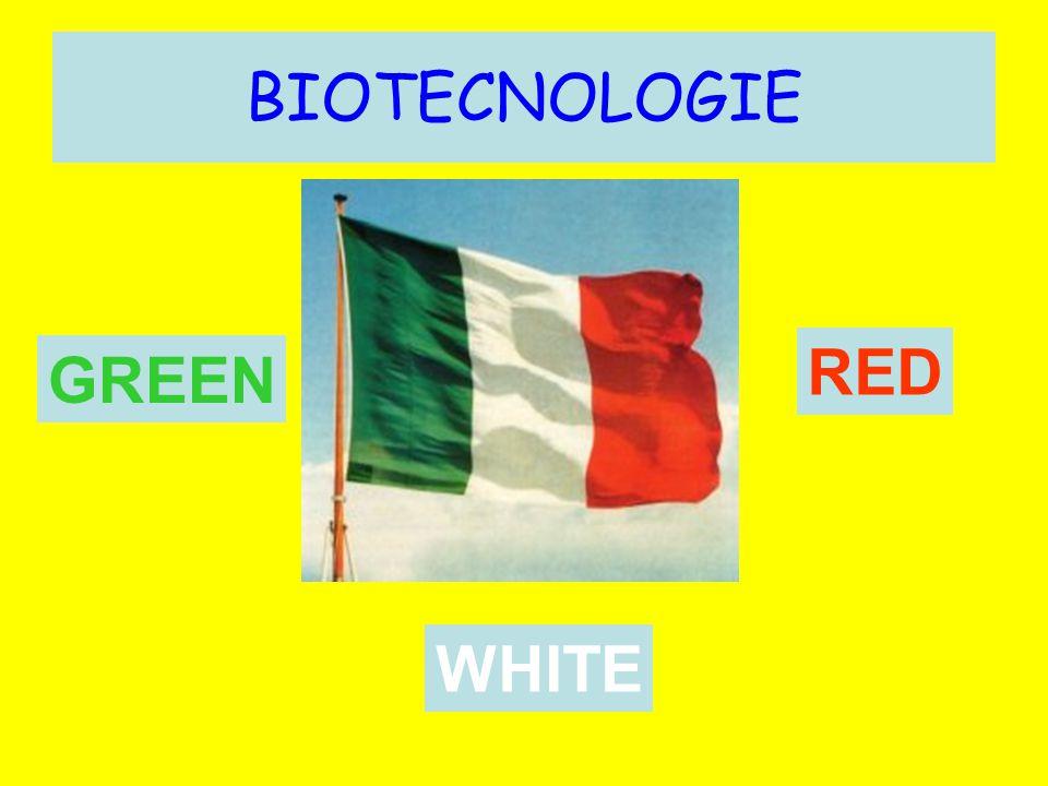 BIOTECNOLOGIE GREEN WHITE RED