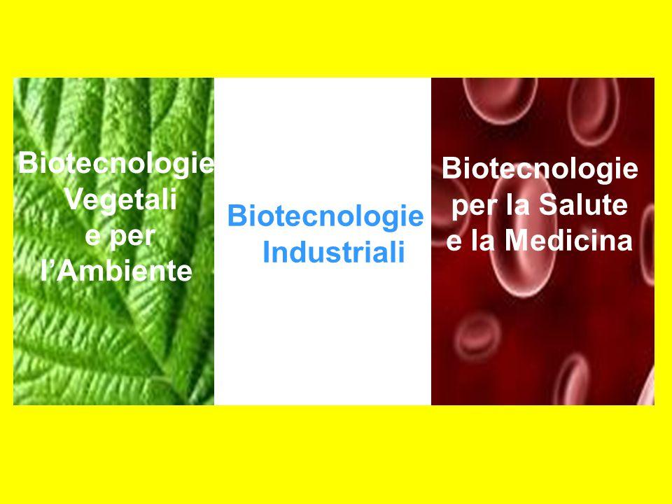 Produzione di vaccini per l'uomo e gli animali con tecnologie del DNA ricombinante e genomica inversa Produzioni cellulari industriali