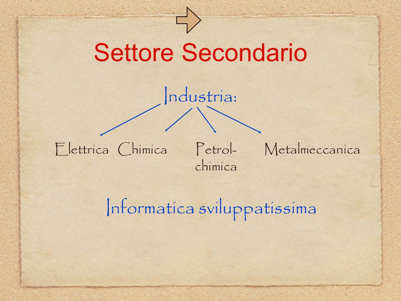 Settore Secondario Industria: Chimica Petrol- chimica Metalmeccanica Informatica sviluppatissima Elettrica