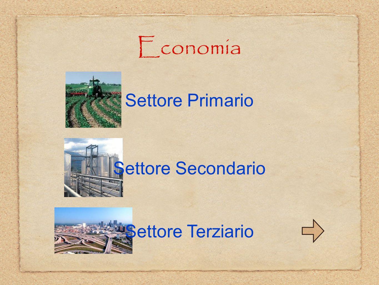 Economia Settore Primario Settore Secondario Settore Terziario