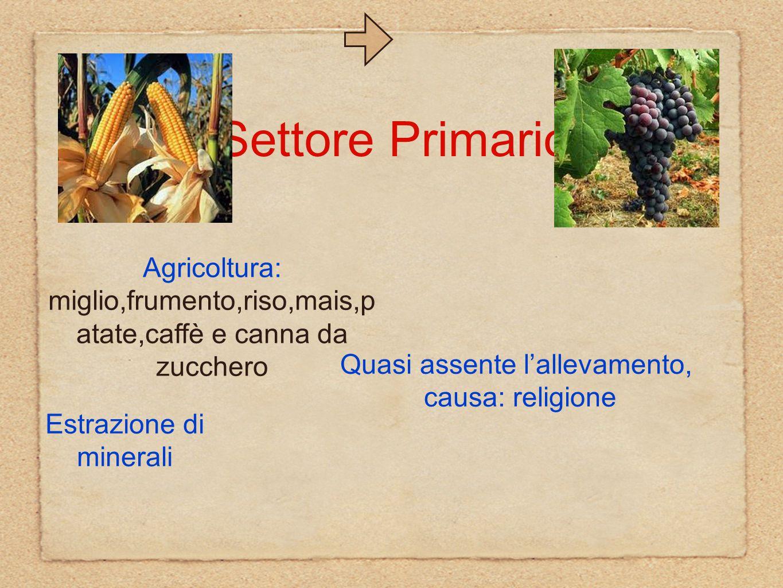 Settore Primario Agricoltura: miglio,frumento,riso,mais,p atate,caffè e canna da zucchero Estrazione di minerali Quasi assente l'allevamento, causa: religione